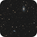 NGC 2336 and IC 467 - intermediate spirals in Cam,                                Benny Colyn