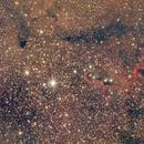 IC1396  The Elephant Trunk Nebula,                                Ray Heinle