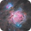 M42 : Great Orion Nebula,                                Tristan Campbell