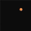 Primo Marte,                                Enrico Benatti