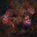 cisne & Águila,                                Astronomono