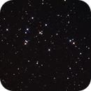 Beehive Cluster - M44,                                Michael Feigenbaum