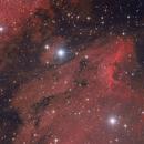 IC 5070 Pelican Nebula,                                Felix D.