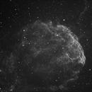 IC 443 - Jellyfish / Quallennebel,                                Michael Hoppe