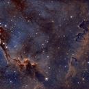 IC1396 Elephant Trunk Nebula,                                nwsorin