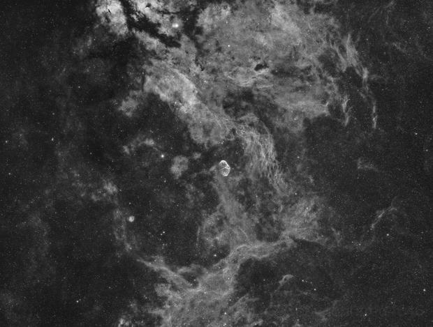 NGC6888 Grand Champ,                                LAMAGAT Frederic