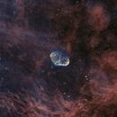 Crescent Nebula (NGC6888),                                Jeff Ridder