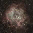 Rosette Nebula,                                Greg Mason