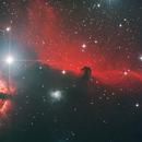 IC434 Horsehead,                                Greg Ray