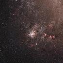 Tarantula Nebula,                                Marcelo Domingues