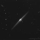 NGC 4565,                                Michele Palma