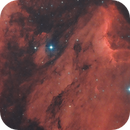 La nébuleuse du pélican, IC 5070,                                gabriel