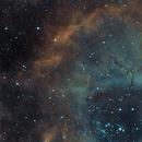 Sh2-275 ou Nebulosa da Roseta,                                João Gabriel Fonseca Porto