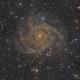 IC342; The Hidden Galaxy,                                Reza Hakimi