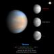 Venus IR-UV image 6th December,                                Niall MacNeill