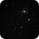 NGC1566,                                Robson Hahn