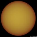 SUN - 07.03.2021,                                Luís Ramalho