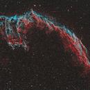 Veil Nebula in Bicolor Narrowband,                                Scott Tucker