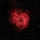 NGC 2244 - Rosette Nebula,                                v3ngence