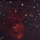 IC1795: Fish Head,                                Enol Matilla