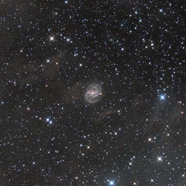 NGC 6951,                                Samuel