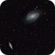 M 81 and M 82,                                Paul Muskee