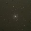M74 - Face on Spiral,                                AlexCharyna