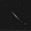 NGC 4244,                                PeterN