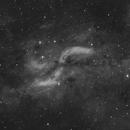 DWB-111,                                Niamor
