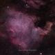 North America Nebula,                                PauRoche