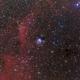 NGC7129,                                Rick Stevenson