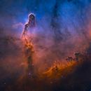 Elephant's Trunk Nebula in Hubble Palette,                                  Min Xie