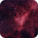 HII Region IC1318,                                Damian Costello