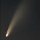 Comet NEOWISE C\2020 F3 12-July-2020,                                Robert Engberg