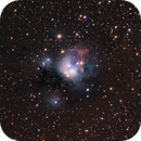 NGC 7129,                                Barry Wilson