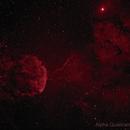 IC 443 The JellyFish Nebula in Ha (False Red & Black Sky),                                Chris