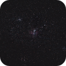 Carinae (test),                                Leandro Rodrigues