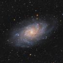 La Galaxia del Triángulo - M33,                                Guillermo Spiers