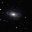 M81 Quickie,                                Steve Lenti