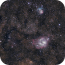 M8 & M20 (from full frame to cropped),                                Jan Curtis