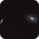 Bode's Galaxy & Cigar Galaxy,                                Aaron Collier