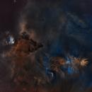 Cone nebula NGC2264 & chritsmas tree cluster HaSHO starless artistic version.,                                lukfer