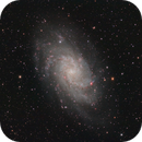 M33 - Triangulum Galaxy under a dark sky!,                                Marco Failli