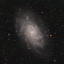 M33 - Triangulum Galaxy under a dark sky!,                                Marco Failli