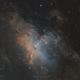 The Eagle nebula and the pillars of creation,                                Angelo F. Gambino