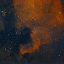 NGC7000 ou Nebulosa da américa do Norte,                                João Gabriel Fonseca Porto