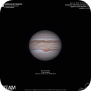 Jupiter,                                Massimiliano Vesc...