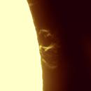 Two loops - Solar prominences,                                Jonas Aliotti Jr