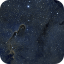 IC 1396,                                Clayton Bownds