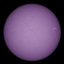 Sun: 5_2_20 Calcium,                                Alan